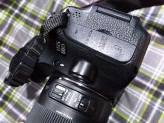 Canon 60D with Sigma 17-70mm