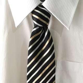 Angelo Domenico Men's Necktie