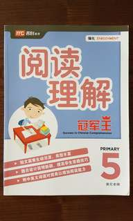 P5 Chinese Comprehension