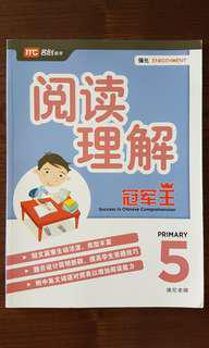 P5 Chinese Comprehension *Brand New*