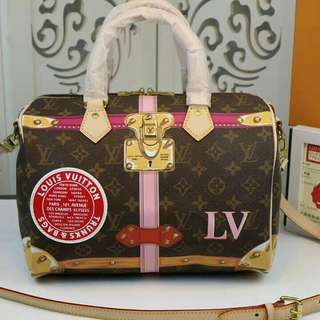 LOUIS VUITTON SPEEDY TRUNK 25