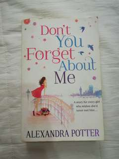 English Novel Don't You Forget About Me