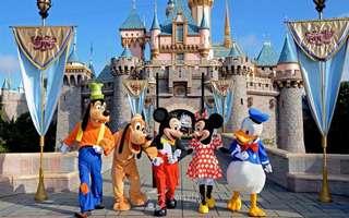 2pcs Tokyo Disneyland 2 day Passport
