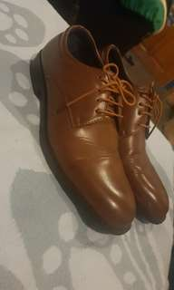 Brown Shoes Salvatorre Mann
