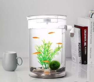 🚚 [PO] Self Cleaning Fish Tank