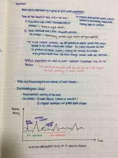 BMAT Biology Notes