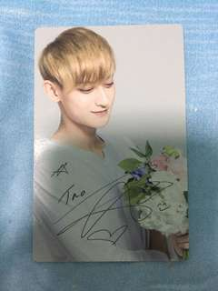 NATURE REPUBLIC TAO PC