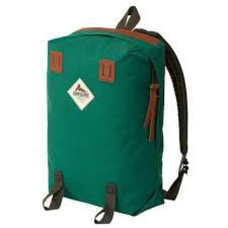 Gregory Offshore 16L daypack, Vintage Green, 綠色