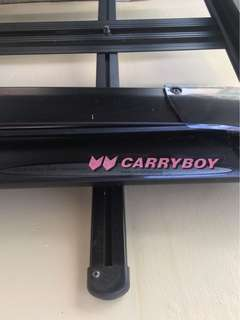 Carryboy Roof Basket/ Roof Rack/ Roof Carrier