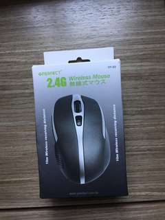 2.4G Wireless Mouse (1)