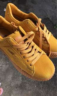 Yellow puma creepers
