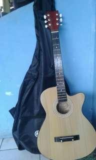 Gitar Akustik Yamaha F310P