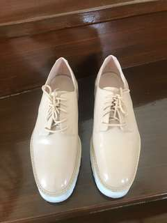 Zara Shoes (used once)