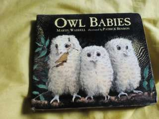 Owl Babies by Martin Waddel