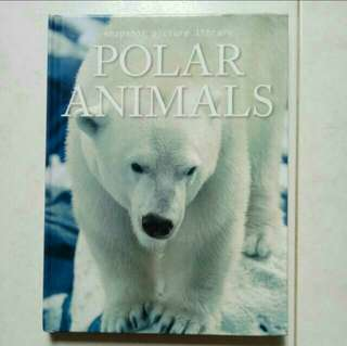 All about Polar Animals/Information book