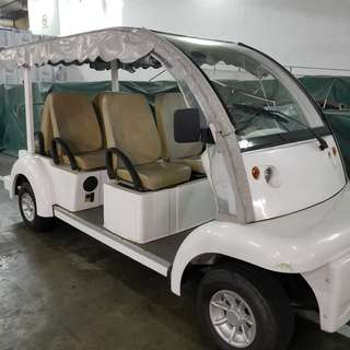 Electric Buggy car for Sale