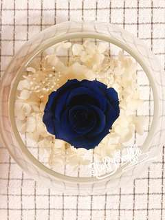 保鮮花/永生花 Preserved flowers
