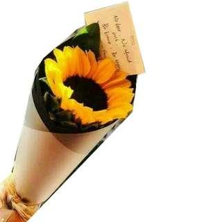 Single stalk sunflower