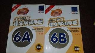 📙P6A&B Chinese Handbook📙