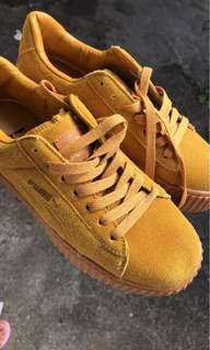 Puma yellow creepers