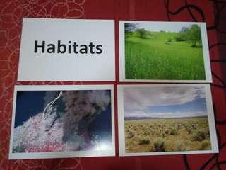 Habitats - BN Glenn Doman Encyclopedic flashcards