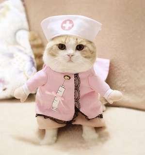好不性感護士裝