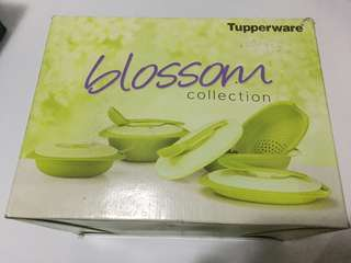 Tupperware Blossom Collection