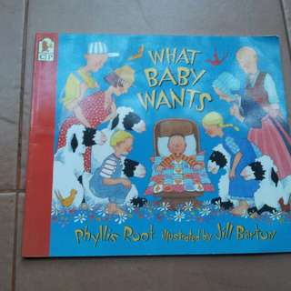 What baby wants  by phyllis root illustrated by jill barton