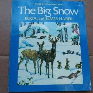 The big snow berta and elmer hader