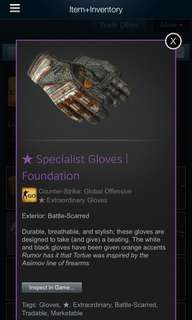 CSGO gloves specialist gloves foundation(BS)