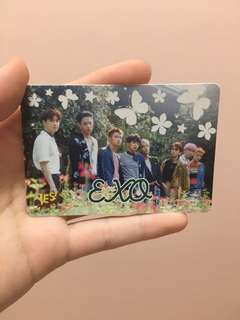 EXO yes card 膠卡
