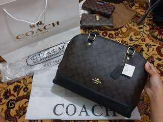 TPS: Coach Slim Sierra Monogram Bag