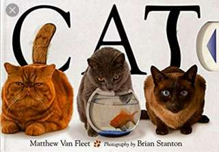 Cat - Boardbook Matthew Van Fleet