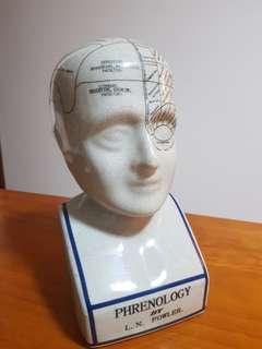 Vintage phrenology bust