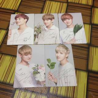 EXO NATURE REPUBLIC PC VER. 1