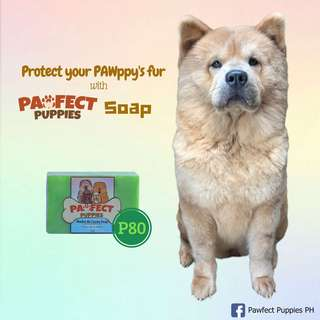 Pawfect Puppies Madre de Cacao Soap