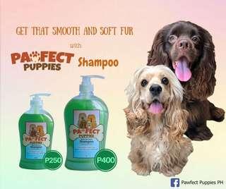 Pawfect Puppies Madre de Cacao Shampoo