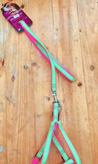 Neon colored  Dog harness