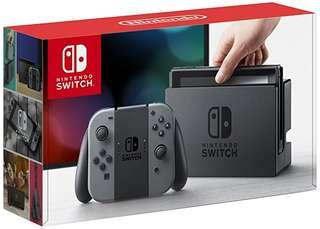 Nintendo Switch Grey Joy-cons