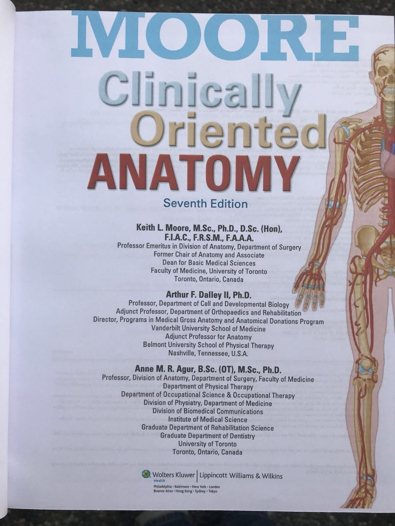 Moore Clinical Anatomy Images - human anatomy diagram organs