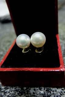 south sea pearl stud earrings 14k white gold setting