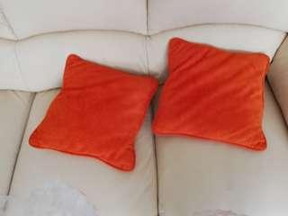 🚚 2 個抱枕