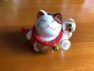 🚚 Fortune Cat- mini