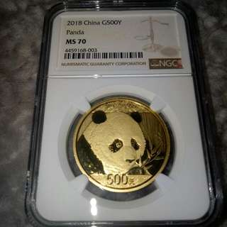 MS70 Gold Panda 1oz Coin (NGC)