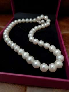 Habib real Pearl Necklace