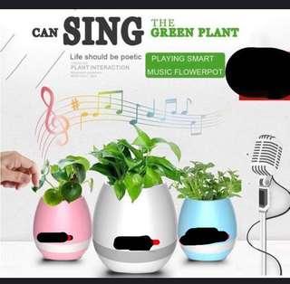 Music pot 2 for $18