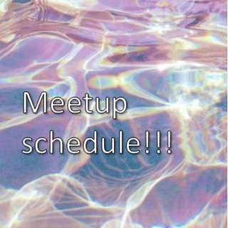 Meetup Schedule