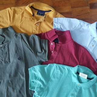 5 springfield original polo set