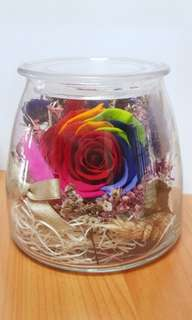 Real Dried Colouful Rose in glass container