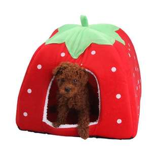 Large Pet House pet bed cat dog bed house tunnel strawberry pet house